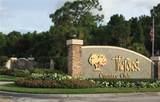 16472 Timberlakes Drive - Photo 35