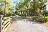 5950 Hidden Hammock Drive - Photo 35