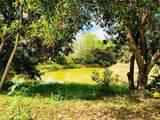 41271 Suzan Drive - Photo 27