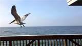 7170 Golden Eagle Court - Photo 33