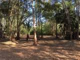 5771 Cedar Tree Lane - Photo 4