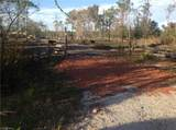 37600 Cook Brown Road - Photo 4