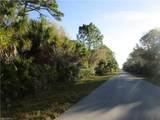 26192 Deer Road - Photo 4