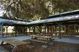 24468 Coffield Court - Photo 10
