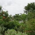 2127 1st Terrace - Photo 2