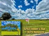 5253 Emmitts Run - Photo 3