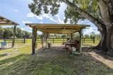 1212 Apache Trail - Photo 6