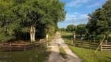901 Al Don Farming Road - Photo 10