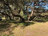 1256 Oak Tree Lane - Photo 6