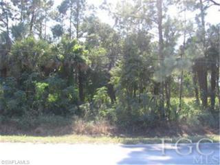 5109 Lake Trafford Rd, Immokalee, FL 34142 (MLS #200859555) :: The New Home Spot, Inc.