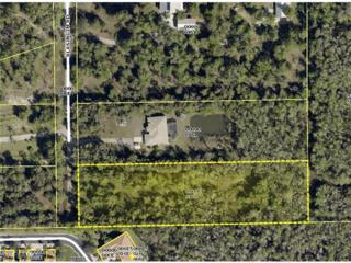 12491 Blasingim Rd, Fort Myers, FL 33966 (MLS #215003885) :: The New Home Spot, Inc.