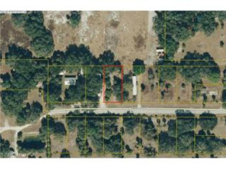 1106 Charles St, Moore Haven, FL 33471 (MLS #215013410) :: The New Home Spot, Inc.