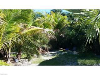 16781/16789 Mcgregor Blvd, Fort Myers, FL 33908 (MLS #215018315) :: The New Home Spot, Inc.
