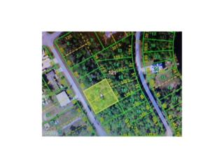 12566 + 12572 Easha Blvd, Punta Gorda, FL 33955 (MLS #215072678) :: The New Home Spot, Inc.