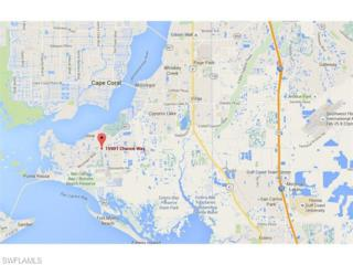 15901 Chance Way, Fort Myers, FL 33908 (MLS #216007884) :: The New Home Spot, Inc.