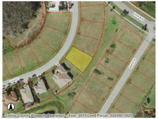 1356 Lincoln Ct, Immokalee, FL 34142 (MLS #216019545) :: The New Home Spot, Inc.