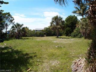 3219 Franzone Rd, St. James City, FL 33956 (MLS #216021512) :: The New Home Spot, Inc.