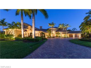 15781 Old Wedgewood Ct, Fort Myers, FL 33908 (MLS #216023641) :: The New Home Spot, Inc.
