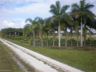 750 Morris Taylor Rd, Felda, FL 33930 (MLS #216025452) :: The New Home Spot, Inc.