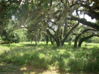 4023 Oak Haven Dr, Labelle, FL 33935 (MLS #216030312) :: The New Home Spot, Inc.