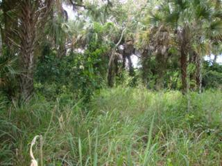 0 Belmont St Belmont St, Labelle, FL 33935 (MLS #216035886) :: The New Home Spot, Inc.