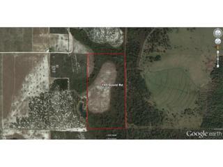 149 Gould Rd E, Venus, FL 33960 (MLS #216047003) :: The New Home Spot, Inc.