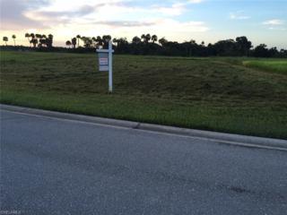 22845 Yellow Button Ln, Alva, FL 33920 (MLS #216047693) :: The New Home Spot, Inc.