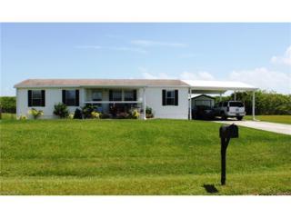 1459 Jerdik Dr, Moore Haven, FL 33471 (MLS #216049989) :: The New Home Spot, Inc.