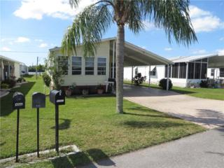 9742 Sugarberry Way, Fort Myers, FL 33905 (MLS #216053298) :: The New Home Spot, Inc.