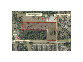 24550 Loblolly Bay Rd, Labelle, FL 33935 (MLS #216053741) :: The New Home Spot, Inc.