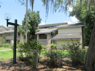 4208 Abbey Ct, Haines, FL 33844 (MLS #216053998) :: The New Home Spot, Inc.