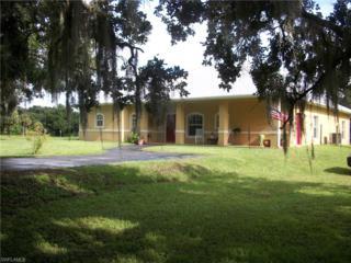 4047 Oak Haven Dr, Labelle, FL 33935 (MLS #216054812) :: The New Home Spot, Inc.