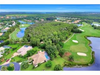 20147 Cheetah Ln, Estero, FL 33928 (MLS #216055336) :: The New Home Spot, Inc.