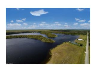425 Shady Hollow Blvd W, Naples, FL 34120 (MLS #216055916) :: The New Home Spot, Inc.