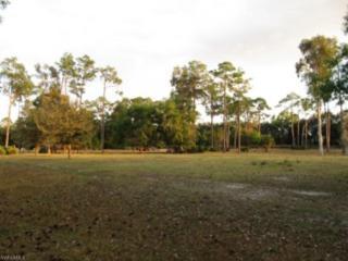 12401 Flintlock Ln, Fort Myers, FL 33912 (MLS #216058381) :: The New Home Spot, Inc.