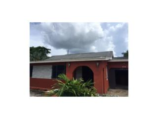 1621 Pawnee St, Fort Myers, FL 33916 (MLS #216058636) :: The New Home Spot, Inc.