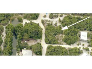 4431 Conch Shell Dr, Captiva, FL 33924 (MLS #216058740) :: The New Home Spot, Inc.