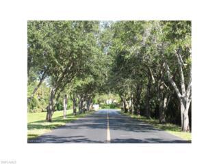 13194 Broadhurst Loop, Fort Myers, FL 33919 (MLS #216059785) :: The New Home Spot, Inc.
