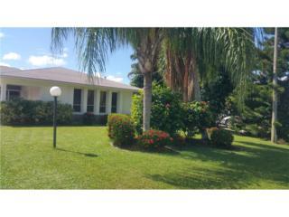 3536 SE 17th Pl, Cape Coral, FL 33904 (MLS #216061071) :: The New Home Spot, Inc.