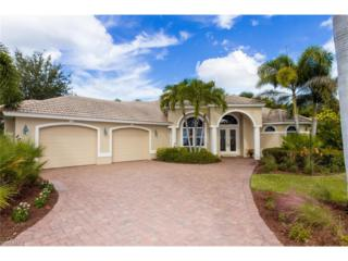 12436 Arbor View Dr, Fort Myers, FL 33908 (MLS #216062304) :: The New Home Spot, Inc.