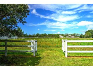 12101 Musket Ln, Fort Myers, FL 33912 (MLS #216062470) :: The New Home Spot, Inc.