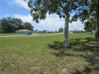 25234 Estrada Cir, Punta Gorda, FL 33955 (MLS #216062719) :: The New Home Spot, Inc.