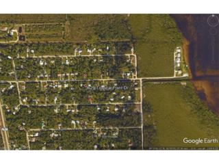 3629 Tropical Point Dr, Other, FL 33956 (MLS #216068062) :: The New Home Spot, Inc.