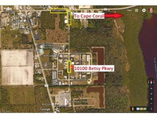10100 Betsy Pky, St. James City, FL 33956 (MLS #216068166) :: The New Home Spot, Inc.