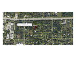 S Oak St, Labelle, FL 33935 (MLS #216068649) :: The New Home Spot, Inc.