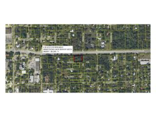 E Hickpochee Ave, Labelle, FL 33935 (MLS #216068678) :: The New Home Spot, Inc.