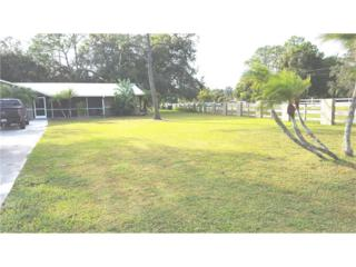 18811 Old Bayshore Rd, North Fort Myers, FL 33917 (MLS #216069060) :: The New Home Spot, Inc.