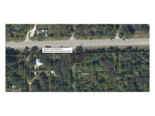 S Oak St, Labelle, FL 33935 (MLS #216069265) :: The New Home Spot, Inc.