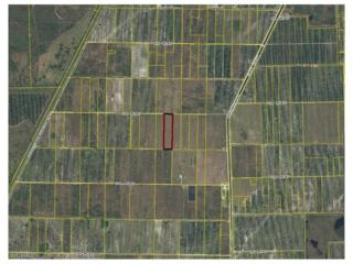 3rd Rd, Labelle, FL 33935 (MLS #216070484) :: The New Home Spot, Inc.