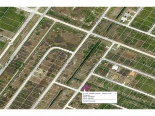 13336 Yager Ln, Port Charlotte, FL 33981 (#216070867) :: Homes and Land Brokers, Inc